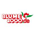 BLUME 2000 online